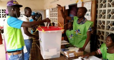 elections_cameroun_integration journal