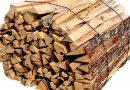 Un million de m3 de bois coupés chaque année