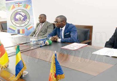 La Cemac passe l'économie du Cameroun au scanner