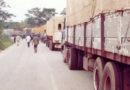 Le racket sur les corridors menace les recettes du port de Douala
