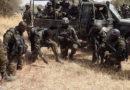 Bataillon d'intervention Rapide (BIR) : Unité d'élite, milice privée et pompe à fric